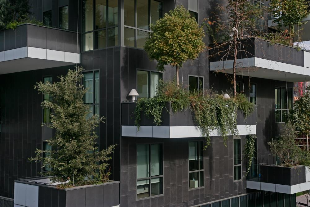 Vertical Forest: Photo 15