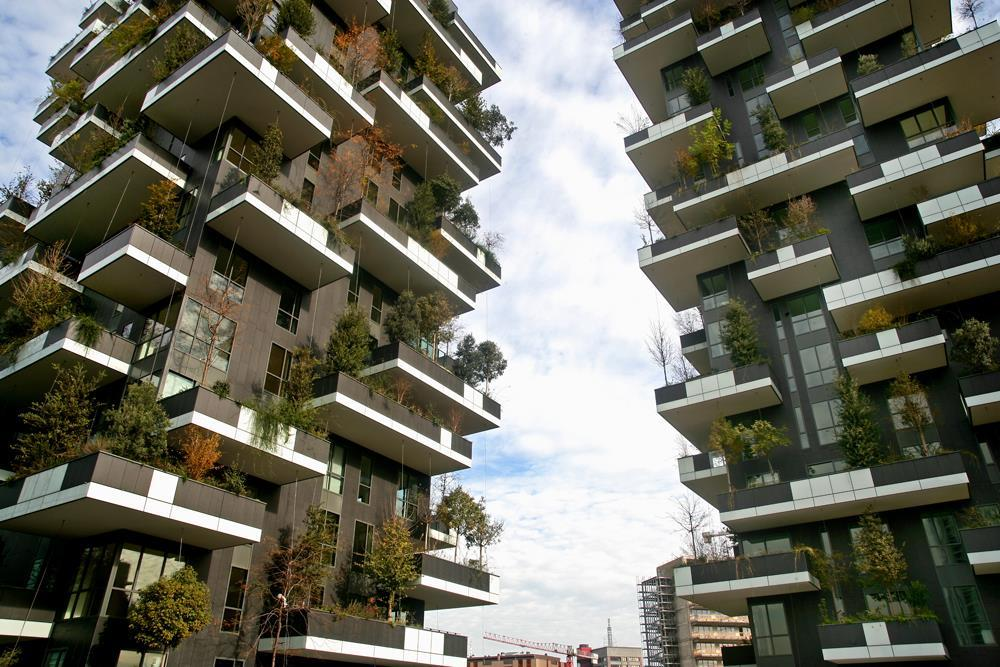 Vertical Forest: Photo 19
