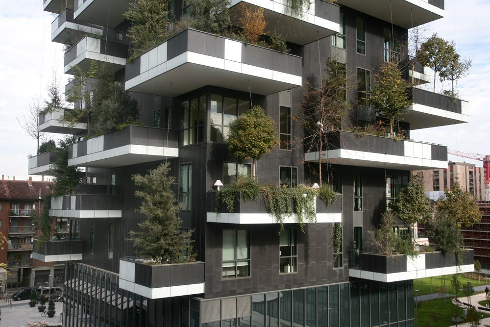Vertical Forest: Photo 24