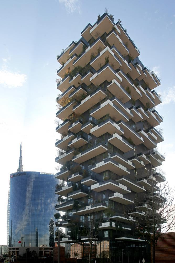 Vertical Forest: Photo 32