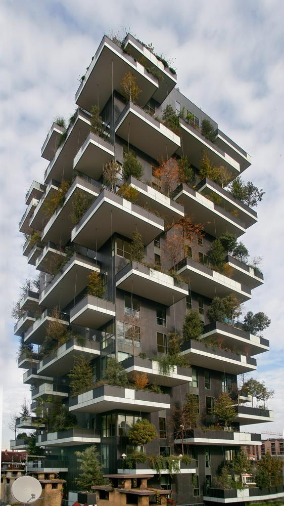 Vertical Forest: Photo 33
