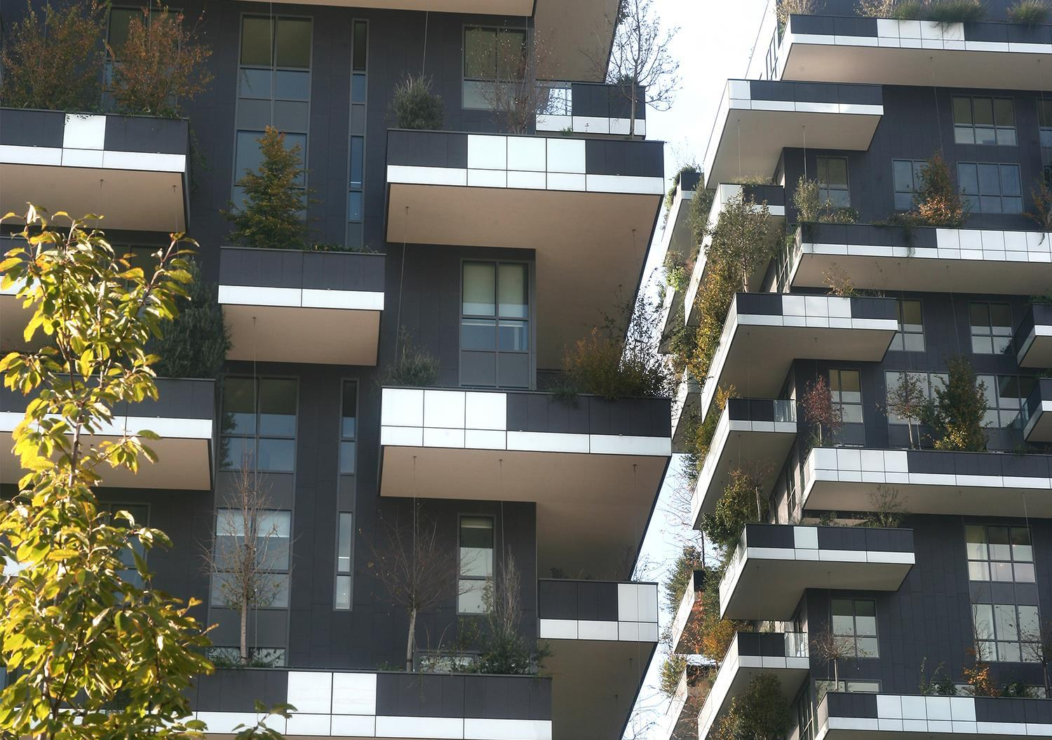 Vertical Forest: Photo 3